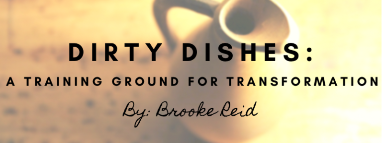 Dirty Dishes by Brooke Reid
